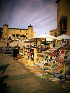 Mercadillo solidario Sornabique en Béjar