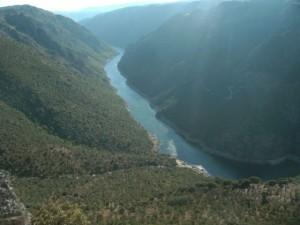 El río Duero desde uno de los miradores de Mieza