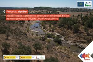 cipriber-home-1024x682