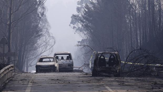 Ecologistas en Acción alertan de que es necesaria otra política forestal para evitar incendios como el de Portugal