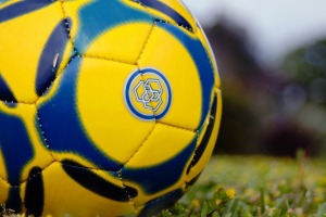 soccer-ball-111428_960_720