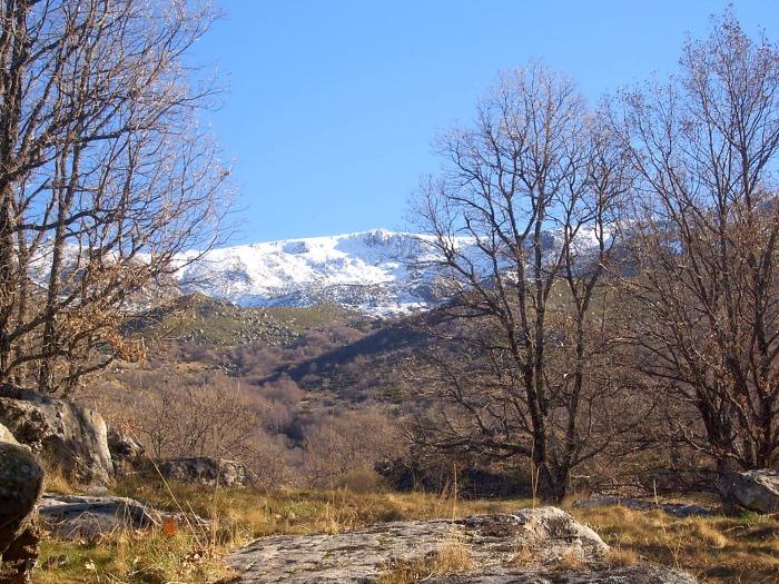 landscape-2659290_1920